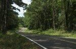 """Diario de Valdivia 1: """"small roads"""", caminos de ida y vuelta"""